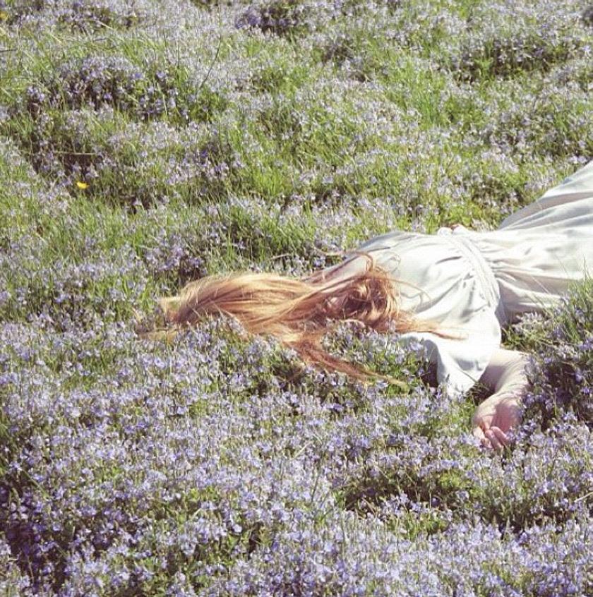 fields_gingerlilly2